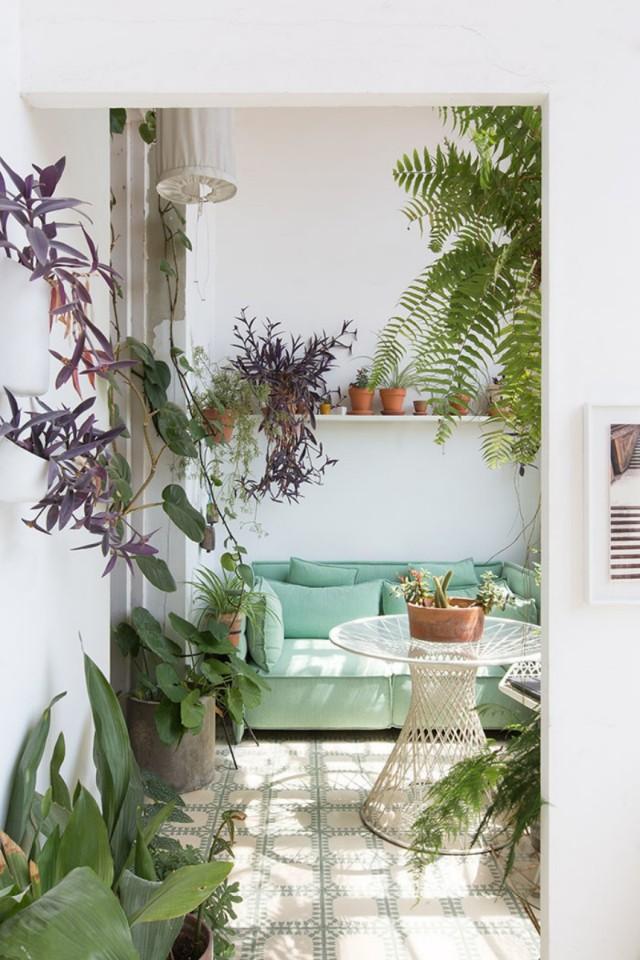 Greenterior – inreda med växter