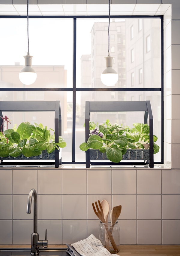 IKEA Hydroponik – hemmaodling på nytt sätt