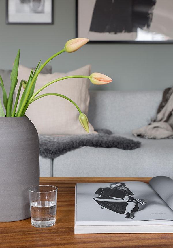 Hitta-hem-Gavelhusen-franska-tulpaner