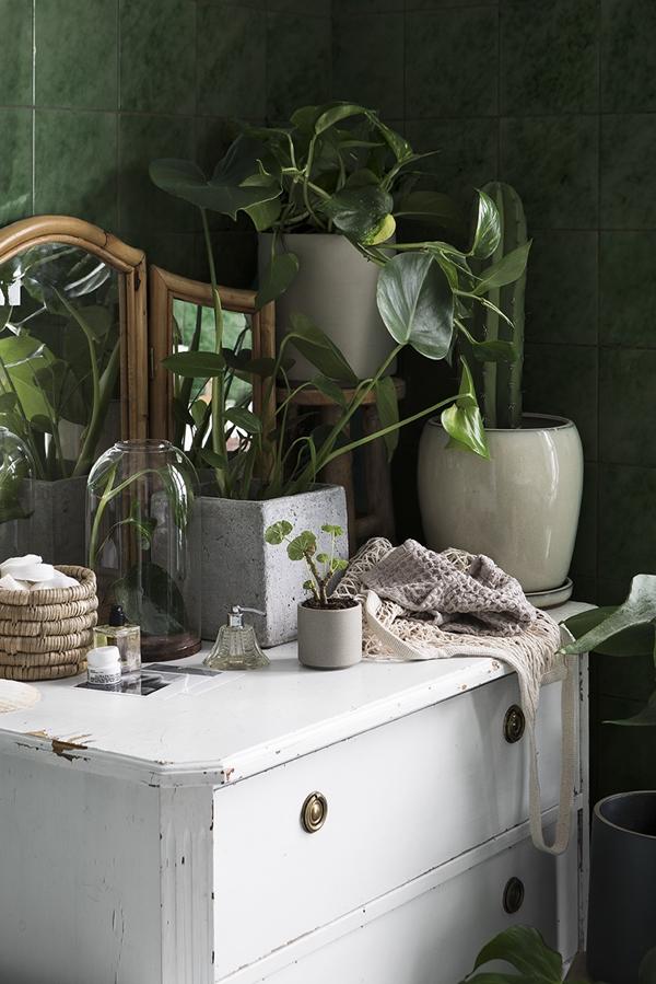 Grönt skönt liv med Granit SS18