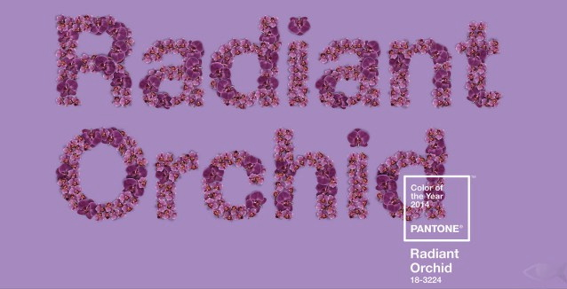 radiant_orchid_pantone_2014_color_of_the_year_03_gallery-1