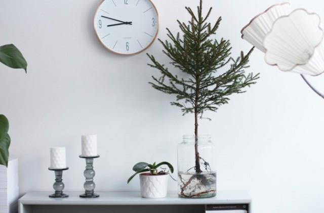 hejregina.elledecoration.se-minigran2-700x462