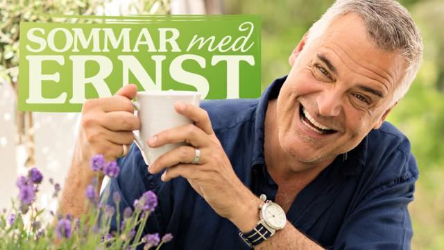 Sommar med Ernst Tv4