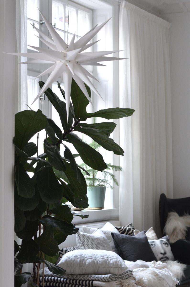 Fönsterdetaljer